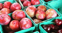 lawrenceville-farmers-market
